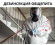 Уничтожение постельных Клопов, фото — «Реклама Евпатории»