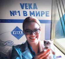 Пластиковые двери на заказ из профиля VEKA официальный партнер - Межкомнатные двери, перегородки в Севастополе