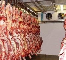 Холодильные Камеры для Хранения Мяса. Камеры Охлаждения и Заморозки. - Продажа в Бахчисарае