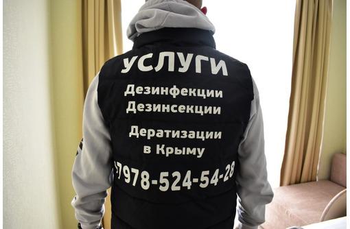 Дезинсекция, дезинфекция, дератизация, дезодорация в Севастополе – «DEZHome»: гарантия качества! - Клининговые услуги в Севастополе