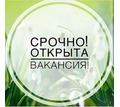 Администратор интернет-магазина - Работа на дому в Красногвардейском