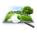 Независимая оценка имущества - Услуги по недвижимости в Евпатории