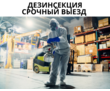 Дезинсекция АЛУПКА, фото — «Реклама Алупки»