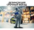 Дезинсекция АЛУПКА - Клининговые услуги в Алупке