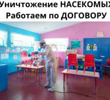 Уничтожение блох ЕВПАТОРИЯ - Клининговые услуги в Евпатории