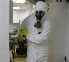 Обработка тараканов Холодным туманом в Приморском - Клининговые услуги в Приморском