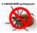 Уничтожение от тараканов с Гарантией АЛУШТА - Клининговые услуги в Алуште