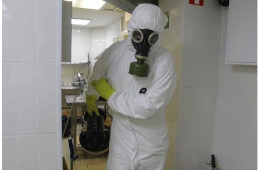 Обработка клопов холодным туманом АЛУШТА - Клининговые услуги в Алуште