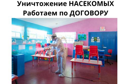 Уничтожение постельных Клопов АЛУШТА - Клининговые услуги в Алуште