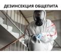 Обработка от Клопов АЛУПКА - Клининговые услуги в Алупке