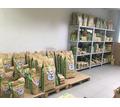 Сухой корм для собак и кошек - Продажа в Керчи
