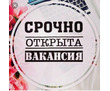 Помощник по безналичному расчету, фото — «Реклама Севастополя»