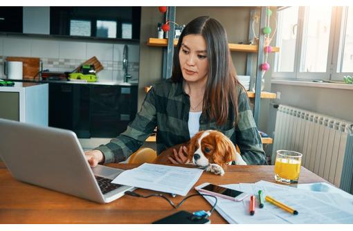 Менеджер по работе с партнерами, фото — «Реклама Севастополя»