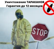 Уничтожение от тараканов с Гарантией в Симферополе - Клининговые услуги в Симферополе