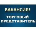 Требуется торговый представитель - Менеджеры по продажам, сбыт, опт в Симферополе