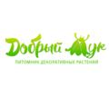 Ландшафтный дизайн в Симферополе - бюро «Добрый Жук», проектирование, благоустройство. - Ландшафтный дизайн в Симферополе