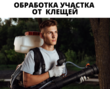 Уничтожение клещей на Участке в Севастополе, фото — «Реклама Севастополя»