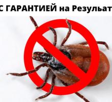 Обработка от клещей в Севастополь - Клининговые услуги в Севастополе