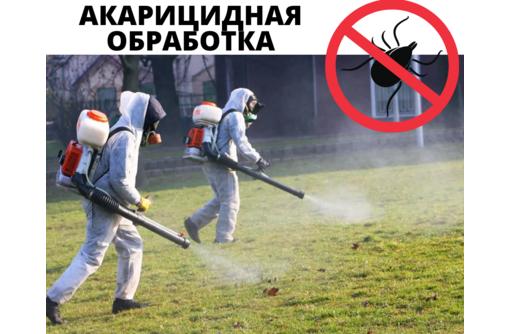 Акарицидная обработка, Уничтожение клещей с гарантией в Севастополе - Клининговые услуги в Севастополе