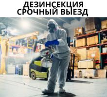 Уничтожение клопов в Старый Крым - Клининговые услуги в Старом Крыму