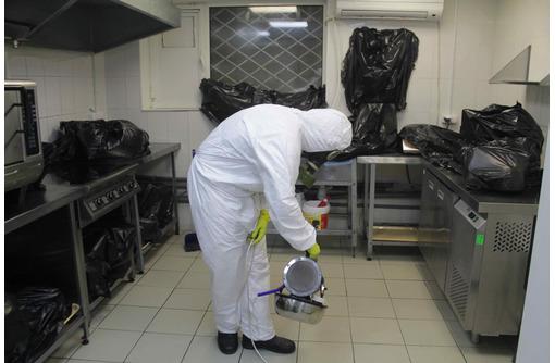 Уничтожение от тараканов с Гарантией в Феодосии - Клининговые услуги в Феодосии