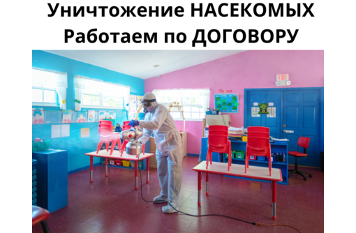 Служба по уничтожению тараканов в Феодосии - Клининговые услуги в Феодосии