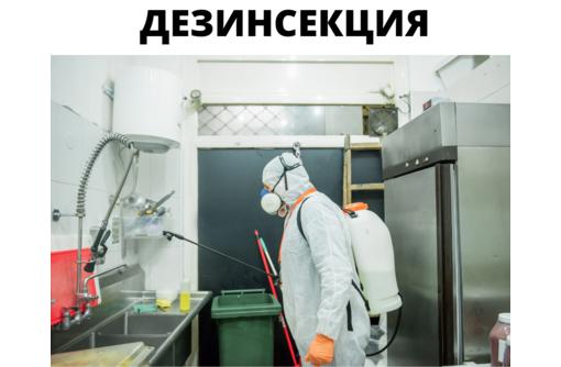 Дезинсекция в Феодосии - Клининговые услуги в Феодосии