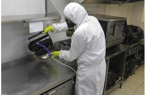 Обработка тараканов Холодным туманом в Форосе, фото — «Реклама Фороса»