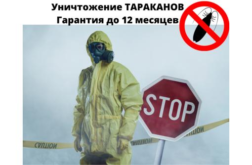 Уничтожение от тараканов с Гарантией в Черноморском - Клининговые услуги в Черноморском