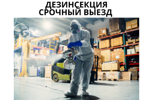 Уничтожение клопов в Черноморском - Клининговые услуги в Черноморском