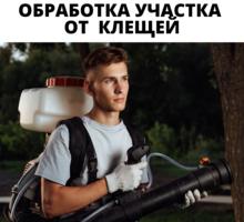 Уничтожение клещей на Участке в Черноморском - Клининговые услуги в Черноморском