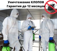 Обработка от клопов в Приморском с гарантией Результата - Клининговые услуги в Приморском