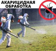 Акарицидная обработка, Уничтожение клещей с гарантией в Приморском - Клининговые услуги в Приморском
