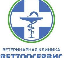 Ветзоосервис ветеринарная клиника - Ветеринарные услуги в Севастополе