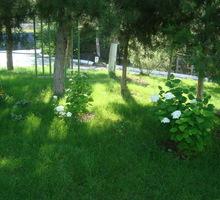 Требуется женщина-садовник - Сервис и быт / домашний персонал в Севастополе