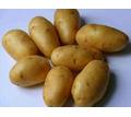 Продам  картофель - Продукты питания в Крыму