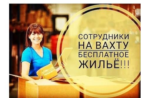 Упаковщик(-ца) на склад  с проживанием,питанием, фото — «Реклама Алупки»