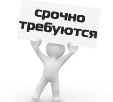 Требуются водители-экспедиторы и грузчики! - Другие сферы деятельности в Севастополе