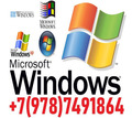 Профессиональная установка, настройка Windows, программ. Ремонт. Выезд на дом. - Компьютерные услуги в Севастополе