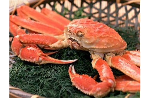 Живые, вареные раки с доставкой в Севастополе – «Морское царство»: только свежая продукция! - Продукты питания в Севастополе
