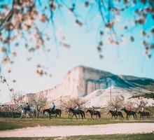 Конные прогулки, прокат на квадроциклах, джип-туры, аренда беседок, пейнтбол, проживание – «Ковбой»! - Активный отдых в Крыму