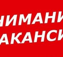 """ПОСУДОМОЙЩИЦА в гипермаркет """"Большое Яблоко"""" (ТРЦ Муссон) - Гостиничный, туристический бизнес в Севастополе"""