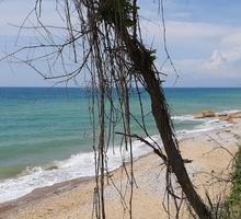 5 соток море свет вода газ - Участки в Севастополе