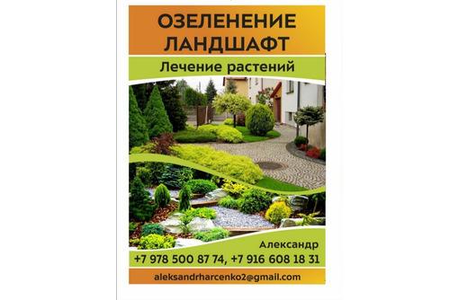 Благоустройство, озеленение, ландшафт в Севастополе –все для эффектного внешнего вида вашего участка - Ландшафтный дизайн в Севастополе