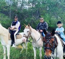 Конные прогулки, квадротуры Севастополь - Активный отдых в Севастополе