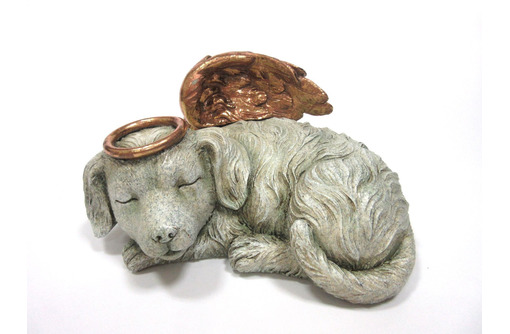 Кремация домашних животных в Севастополе – «Севzoo Ритуал»: проводим вашего питомца в последний путь - Ветеринарные услуги в Севастополе