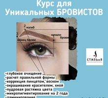Курс Бровиста - Курсы учебные в Крыму