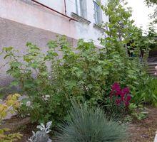 Продам 2 дома 91 и 46 кв.м. 7 соток//Полдома и отдельно стоящий дом, 4 сотки - Дома в Севастополе