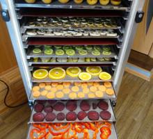 Инфракрасная сушилка (дегидратор) для овощей и фруктов - Садовый инструмент, оборудование в Белогорске