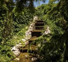 Ландшафтный дизайн, озеленение территории. Индивидуальные скидки - Ландшафтный дизайн в Севастополе